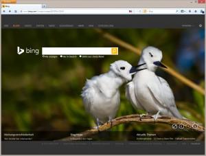 Abb 7_01 Microsofts Suchmaschine Bing